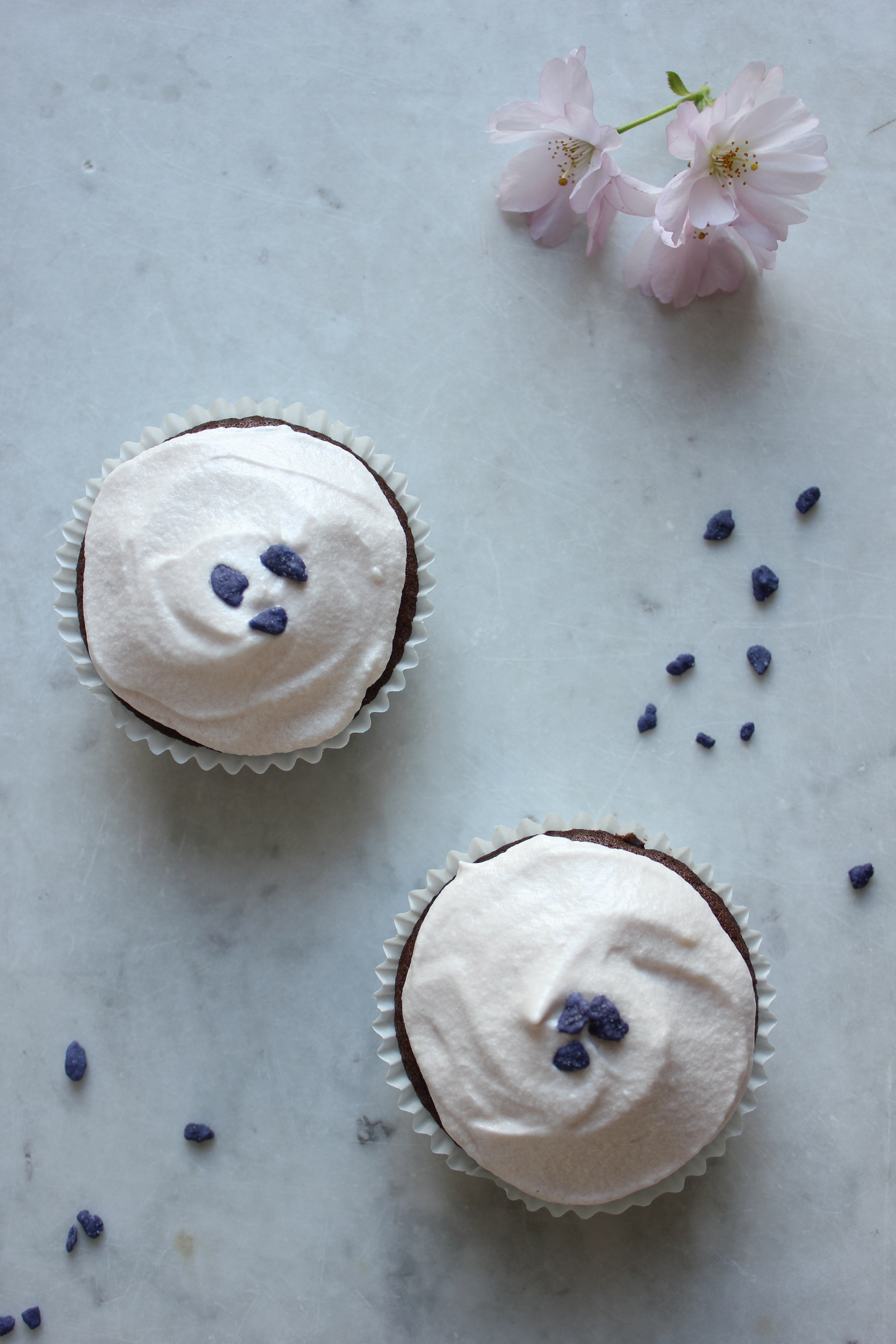 Chocolate and violet cupcakes