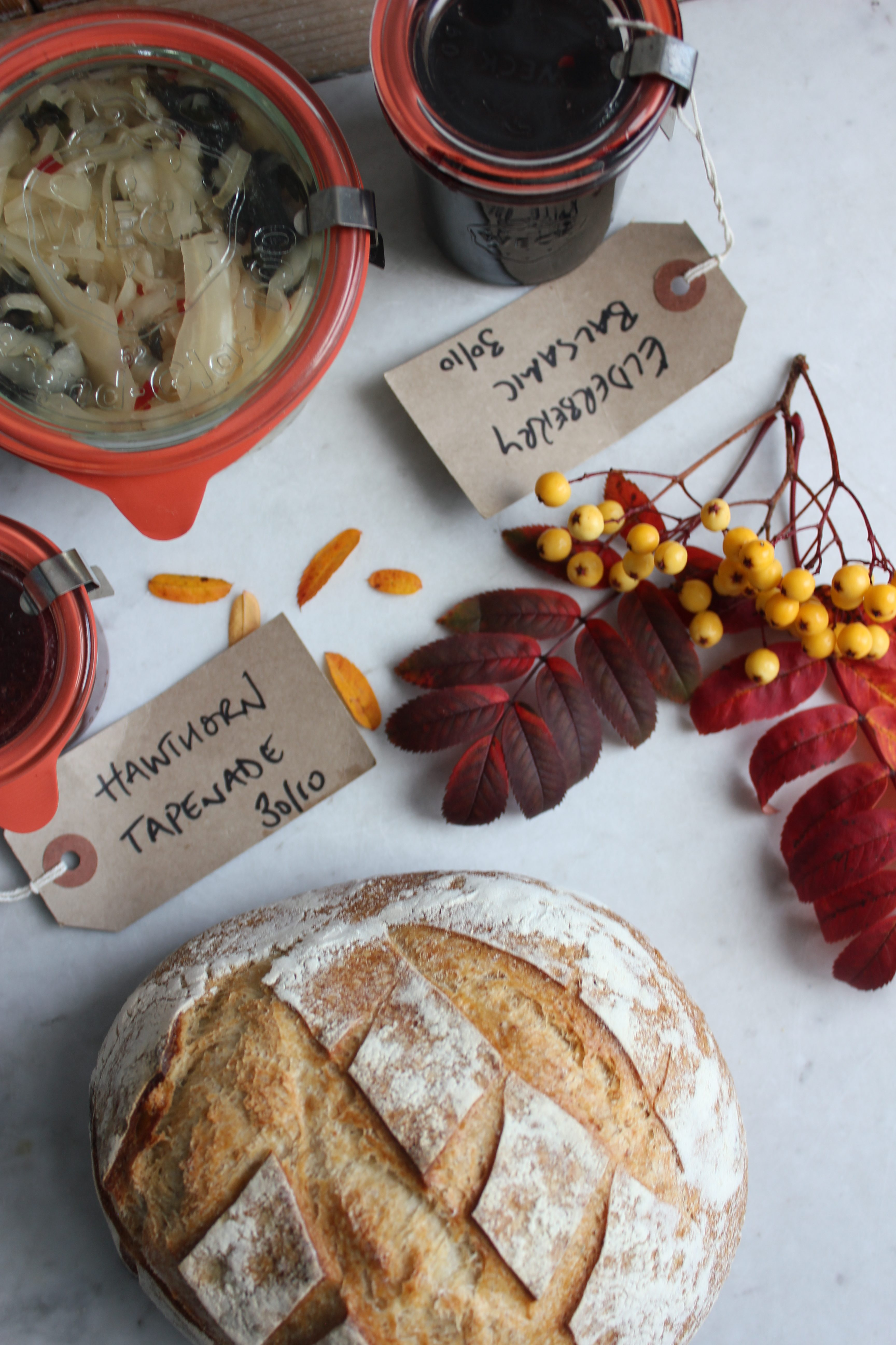 Century General Store Foraging Course