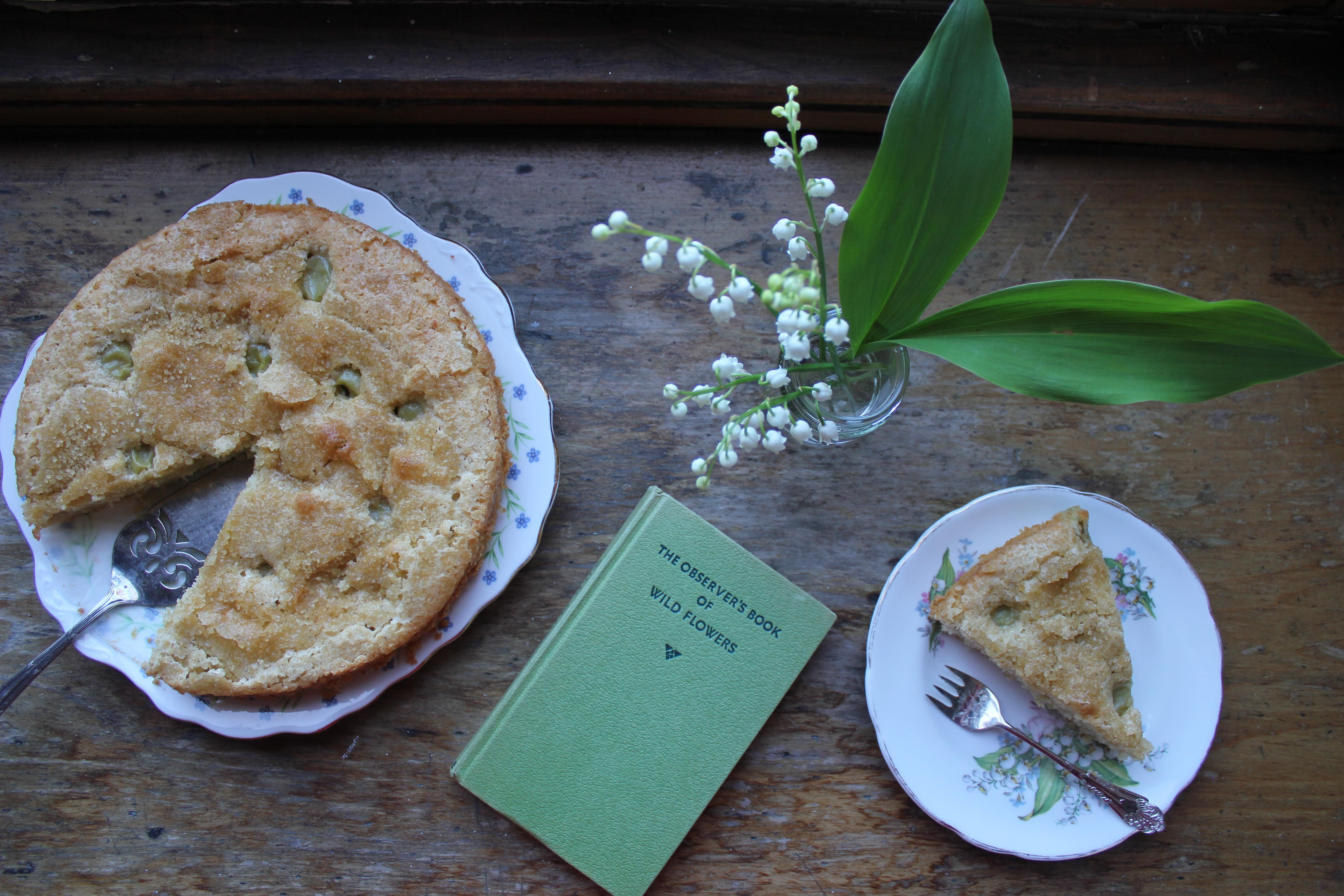 Gooseberry cake, Flora Shedden