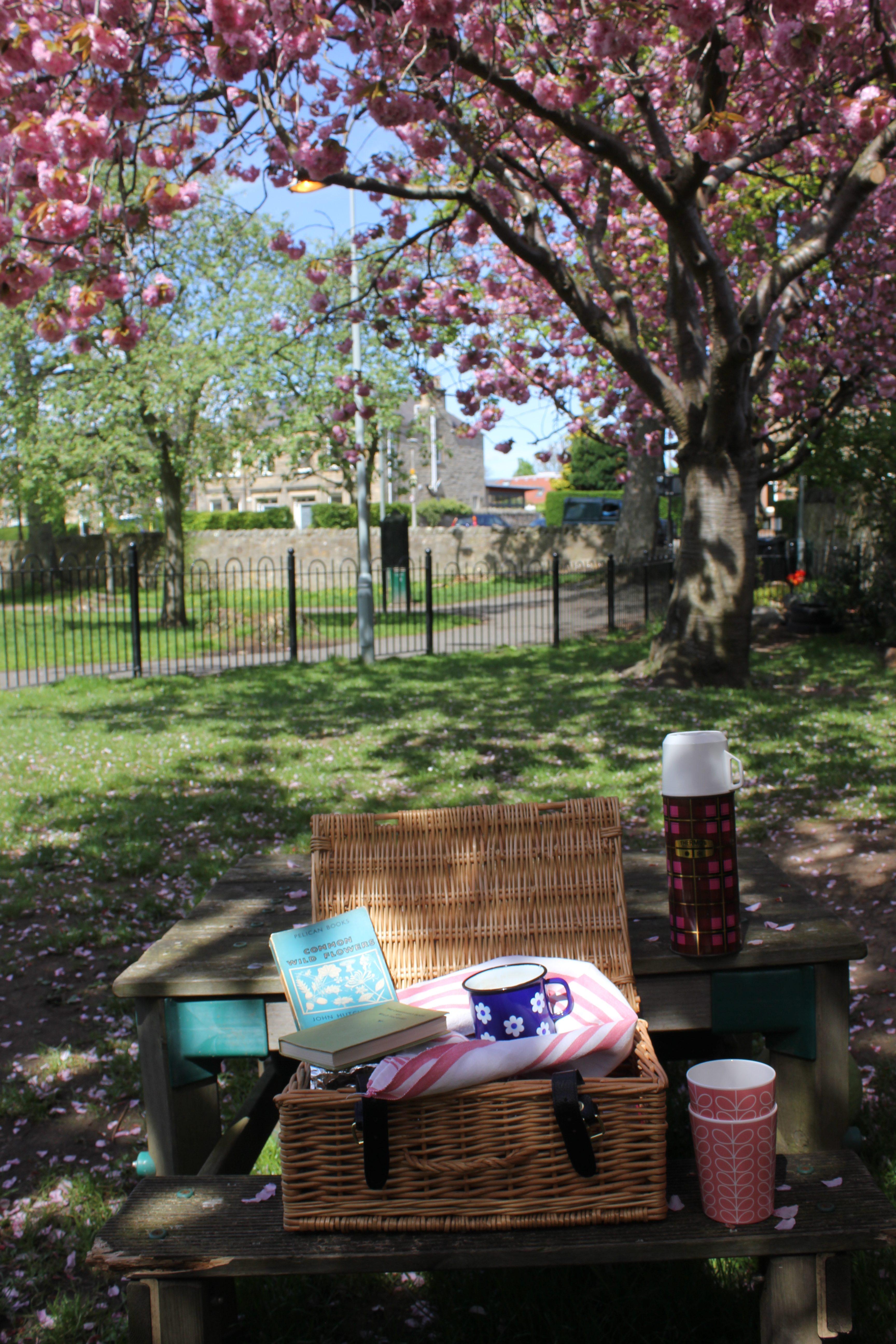 Blossom picnic