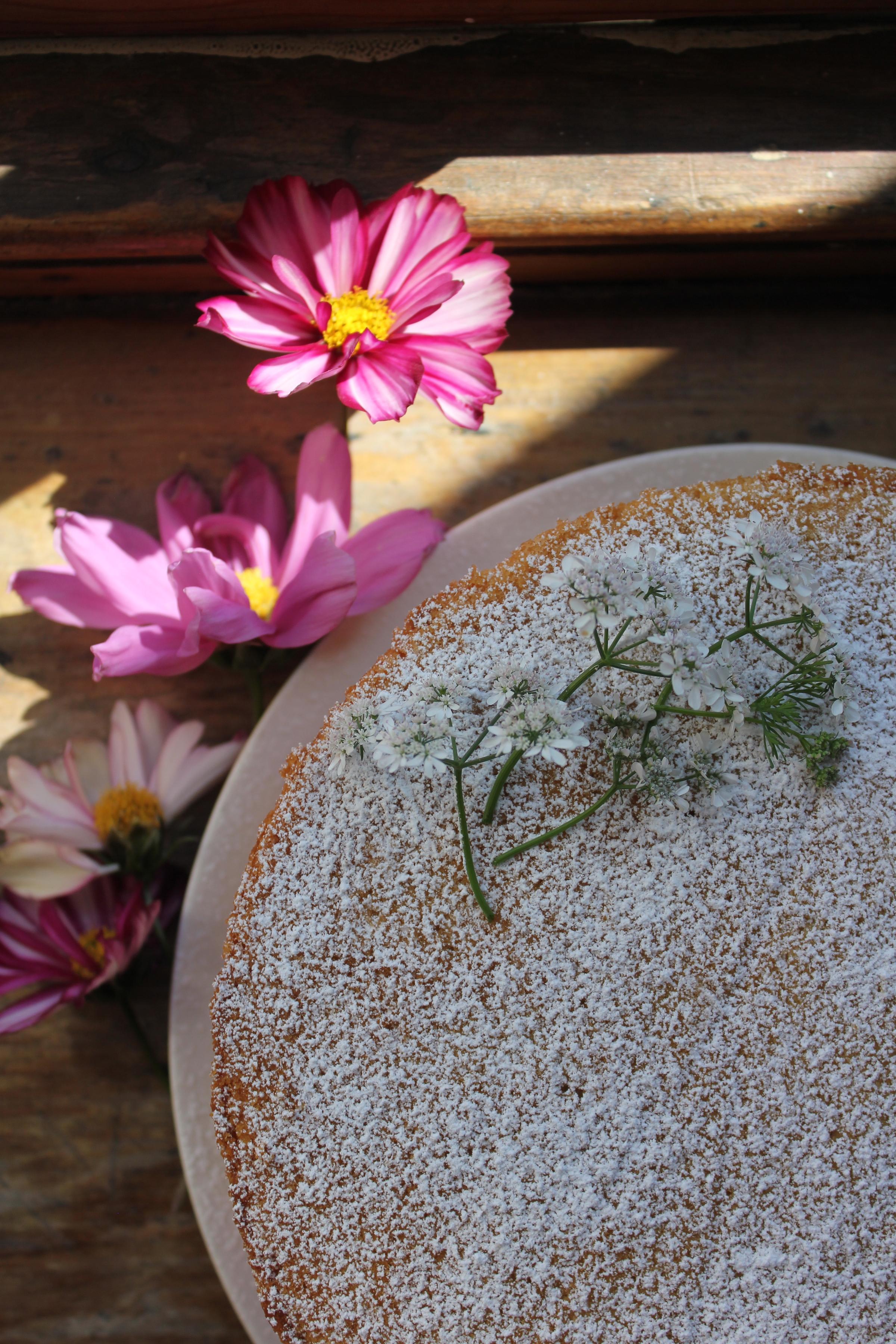 Gooseberry, Elderflower and Almond Sponge