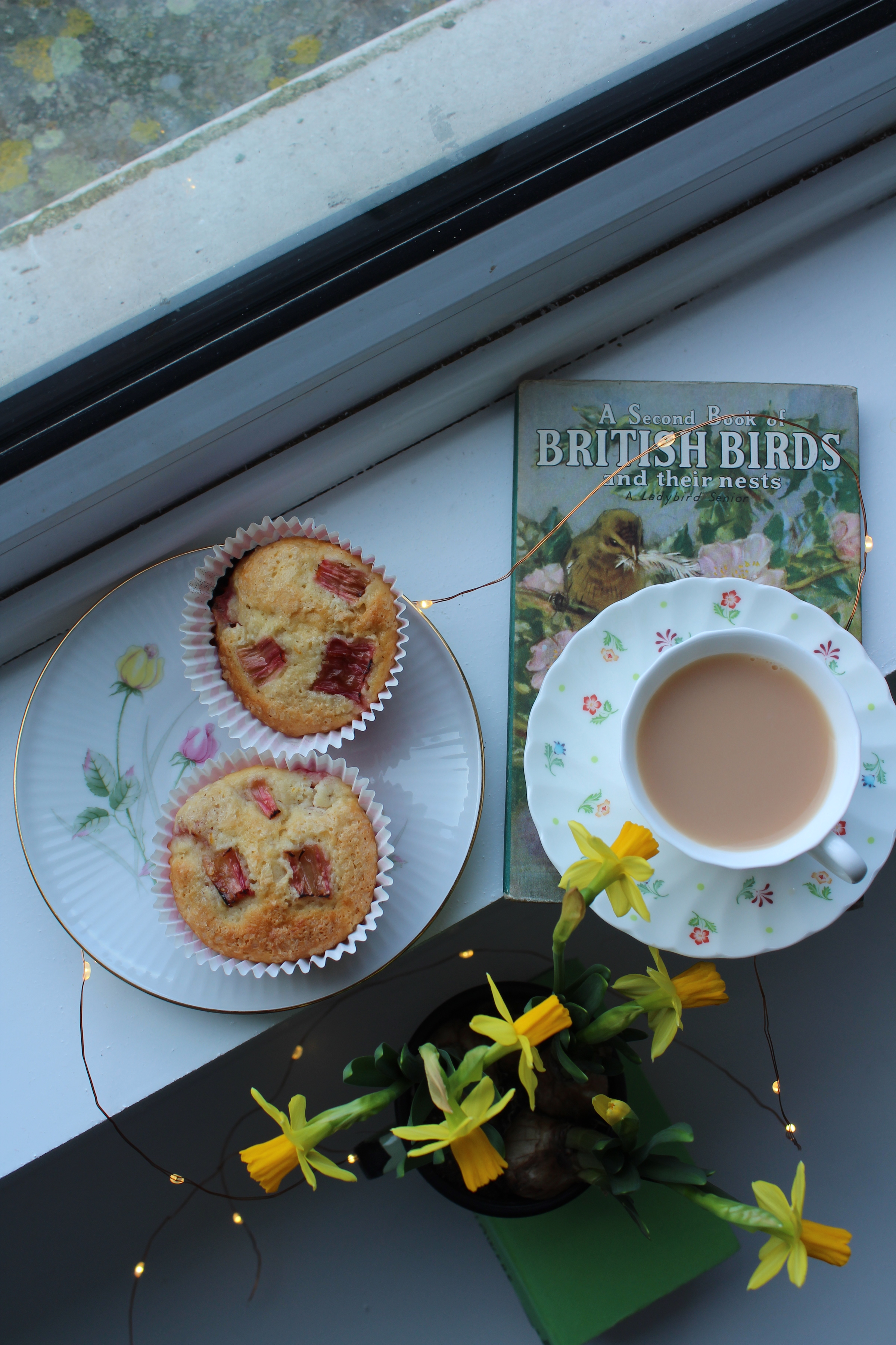 Rhubarb and Spelt Muffins