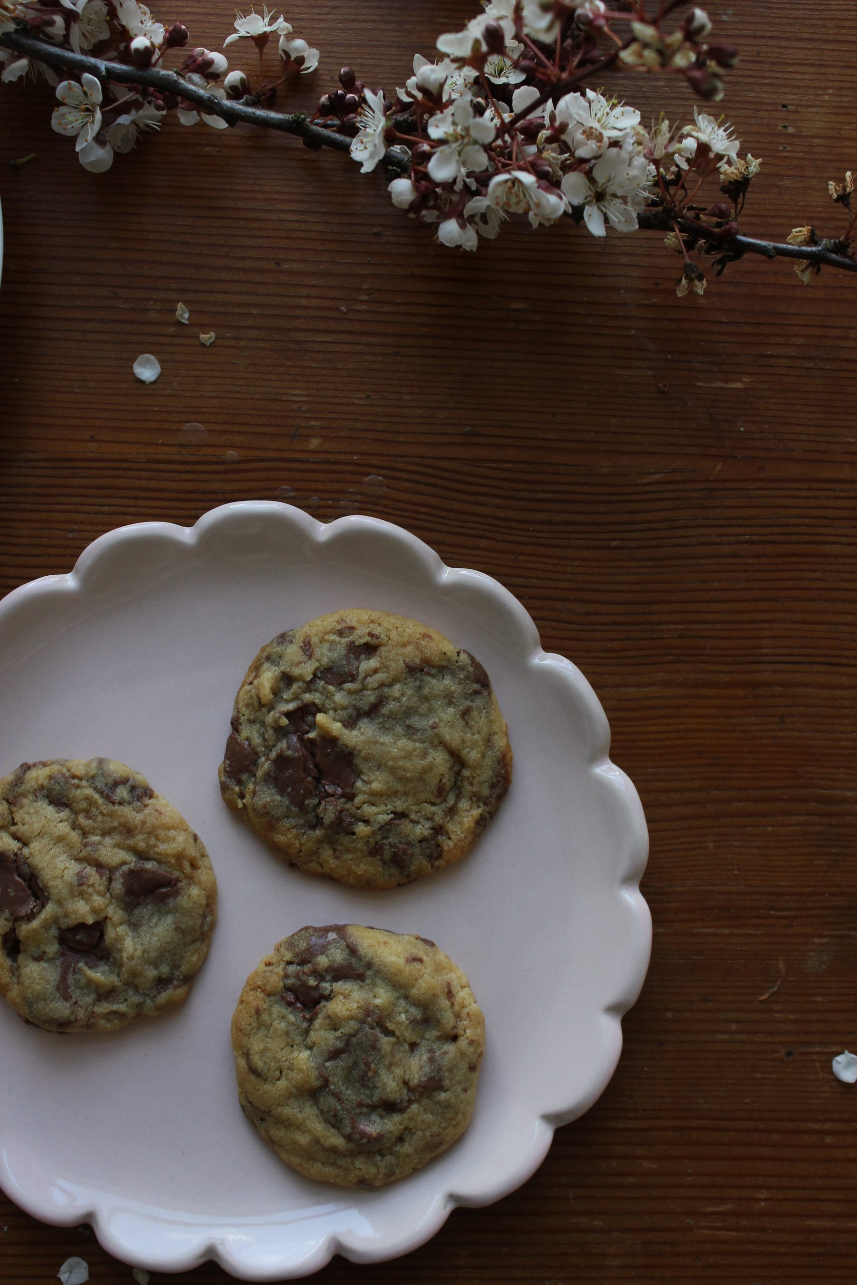 Chocolate and Rose Cookies