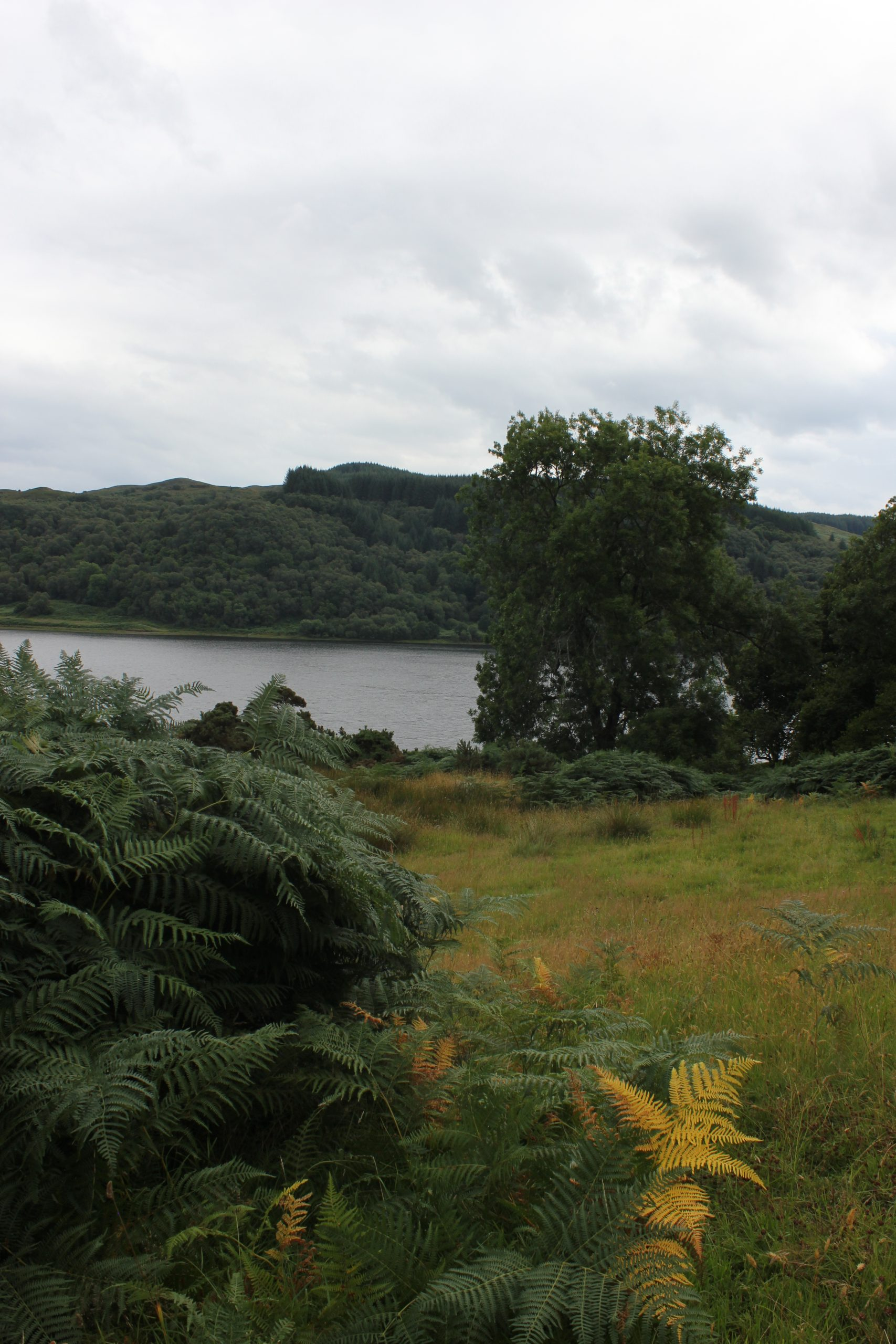 Inverlonan, Scotland